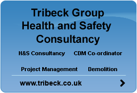 Professional Health and Safety Consultancy